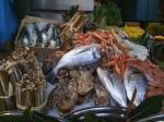 More live seafood